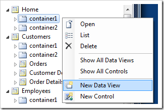 Adding a new data view to a page container