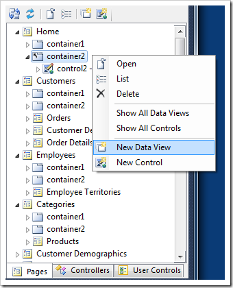 'New Data View' option in the context menu of a container in Project Explorer