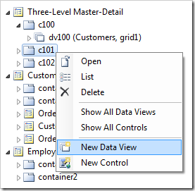 'New Data View' option for 'c101' container in the Project Explorer.