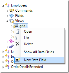 New Data Field in grid1 view of Employees controller.