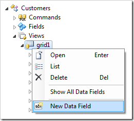 New Data Field in Customers controller.
