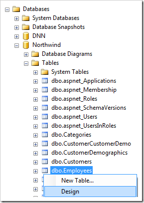 Design option for Employees table of Northwind database.