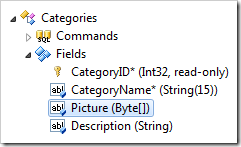 Picture field node placed after Description in the Project Explorer.