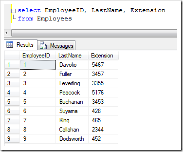 The list of employees stored in the 'Northwind' sample database table 'Employees'