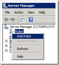 Adding Roles to the server.